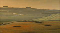 Poppies in a Field Near Rockley (stevedewey2000) Tags: sunset landscape poppies wiltshire marlborough marlboroughdowns rockley barburycastle sigma150500