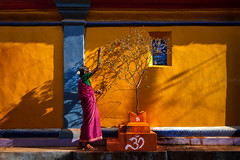 Holy Tulsi. Gokarna, India (Marji Lang Photography) Tags: life street old travel light people woman india plant colors vegetables yellow wall composition contrast walking temple person photography one daylight colorful shadows village walk indian streetphotography documentary sunny streetlife compo holy oldwoman gokarna colourful caring dailylife typical care om karnataka hindu hinduism picturesque sari oldage lightandshadow oneperson tulsi inde hindutemple southindia streetshot villagelife omsymbol travelphotography indianwoman gokarn indiacolors indianpeople indiansubcontinent streetcomposition womansilhouette pinksari tulsiplant omsign marjilang swastikasymbol ganapatitemple tulsitree holytulsi