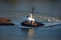 Tugboat Harken 9 (drmack2) Tags: island log poplar bc arm north boom fraserriver newwestminster quayside