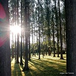 "#sunset #Steenhuize #herzele #vlaamseardennen #belgie <a style=""margin-left:10px; font-size:0.8em;"" href=""http://www.flickr.com/photos/117161355@N07/20156343321/"" target=""_blank"">@flickr</a>"