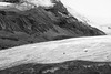 Walking on the Athabasca Glacier (Kirk Lougheed) Tags: alberta athabasca athabascaglacier canada canadian canadianrockies canadien columbiaicefields icefieldparkway jasper jaspernationalpark autumn bw blackandwhite fall glacier ice landscape mountain nationalpark outdoor snow