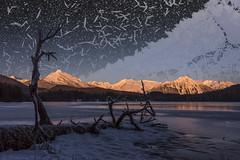 Dead Alien Lake (Gillfoto) Tags: alien lake winter ice icicle montage mountains frozen dead tree crystal