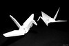 Plastic and Paper (Takamichi Irie) Tags: lego paper crane origami