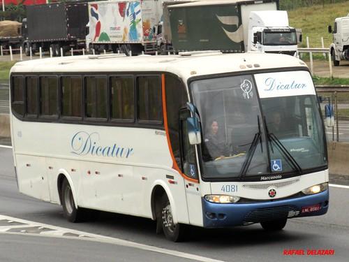 Dicatur - 4081