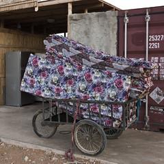 Kfar Hanokdim - Bedouin Hospitality (Keith Levit) Tags: bedouin israel judeandesert kanaimvalley kfarhanokdim ezorbeersheva southdistrict il