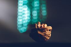 The walnut - a cracking and peeling (simonpe86) Tags: schale markto walnut schälen peel itsapeelingtome macromondays peeling walnus shell