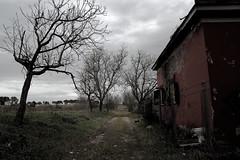 Foto_8778 (lumun2012) Tags: lucio mundula canon eos 7d tamron rovine rurale campagna lazio inverno antiquity architettura