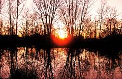 """""""La Luna disse al Sole :-Ti amo-   Il sole arrossì.   E  nacque il Tramonto! : ) (onDa8) Tags: sole luna tramonto amore"""
