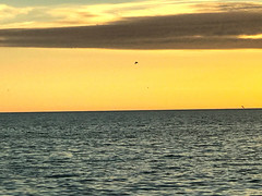 A Beautiful Sunset on Lido Beach (soniaadammurray - Off) Tags: iphone sunset quote claudedebussy nature beautiful book lidokey beach sarasota florida usa sky clouds birds sea sliderssunday golden hss