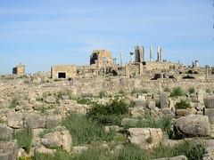 View to Capitoline Temple, ruins of Volubilis, Morocco (Paul McClure DC) Tags: morocco almaghrib fèsmeknèsregion volubilis jan2017 roman architecture historic