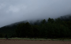 PDSCF2153 (Adzuki Darling) Tags: parc national du fjorddusaguenay september 2016