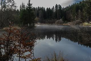 Abandoned Lake