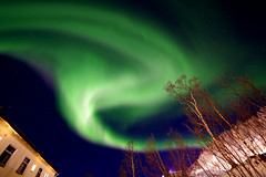 Swirls and Curls (Fong Lim) Tags: aurora borealis northern lights norway harstad winter fong lim travel photos photography sony a7rii samyang 14mm f28