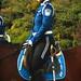Dalian mounted policewoman