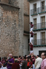 "Trobada de Muixerangues i Castells, • <a style=""font-size:0.8em;"" href=""http://www.flickr.com/photos/31274934@N02/17770868524/"" target=""_blank"">View on Flickr</a>"