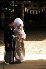 d200_dsc_2411_20150606 (mick ronno) Tags: nikon shrine af d200 kawagoe nikkor 2870mmf3545d jinja 川越 hikawa 氷川神社 koedo 小江戸 20150606