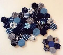 Hexagones (viviane_adxvm) Tags: indigo hexagons hexagones jardindegrandmère