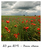 005 - Braives éclaircies (DaLem14) Tags: sky nature clouds project cloudy diary champs daily days ciel poppies fields 365 nuages challenge projet jours défi coquelicots nuageux hesbaye braives