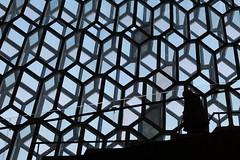 Harpa Concert Hall, Reykjavík (Freeman_Lowell) Tags: harpa concert hall window windows silhouette iceland reykjavík reykjavik sky