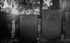 Headstones. (Ian Emerson) Tags: church headstone ancient old outdoor graveyard blackwhite leaves trees buildings canon