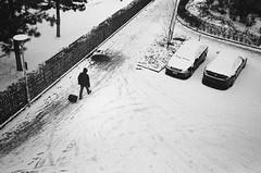 snow business (gato-gato-gato) Tags: 35mm ch contax contaxt2 iso400 ilford ls600 noritsu noritsuls600 schweiz strasse street streetphotographer streetphotography streettogs suisse svizzera switzerland t2 zeiss zueri zuerich zurigo z¸rich analog analogphotography believeinfilm film filmisnotdead filmphotography flickr gatogatogato gatogatogatoch homedeveloped pointandshoot streetphoto streetpic tobiasgaulkech wwwgatogatogatoch zürich black white schwarz weiss bw blanco negro monochrom monochrome blanc noir strase onthestreets mensch person human pedestrian fussgänger fusgänger passant sviss zwitserland isviçre zurich autofocus