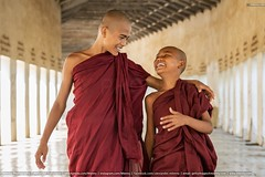 Happy Novice Monks Together Bagan Myanmar (Mlenny!) Tags: adolescence adult asia asianandindianethnicities bagan boys buddha buddhism cheerful child completelybald cultures discussion eastasianculture eastasianethnicity enjoyment fineartportrait friendship fun getty gettyimages happiness horizontal humor indigenousculture istock istockphoto joy laughing lifestyles lightnaturalphenomenon love mandalay men mlenny mlennycom monastery monk myanmar myanmarculture novicebuddhistmonk people photography portrait positiveemotion realpeople religion religiousdress religiousveil shavedhead smiling spirituality synagogue talking teamwork teenager teenagersonly templebuilding togetherness twopeople walking youngadult