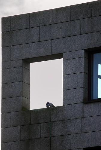 """Scheinfenster • <a style=""""font-size:0.8em;"""" href=""""http://www.flickr.com/photos/69570948@N04/31519709932/"""" target=""""_blank"""">Auf Flickr ansehen</a>"""