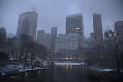 Central Park- New York (geraldineh.dutilly) Tags: newyork fog winter snow