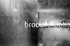 Brood (Martijn_68) Tags: rol5 brood minoltaxd7 zwartwit apx400