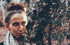 leaves (joffi.) Tags: leaves vsco nikon d7200 35mm 18 portrait light