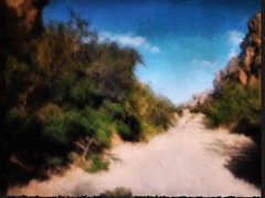 Dog Canyon, on the old Comanche Trail