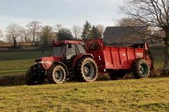 Case iH Maxxum 5150 + Jeantil (Philippe-03) Tags: caseih case maxxum jeantil tracteur tractors agriculture campagne fumier