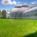 Bronx Botanical Garden II