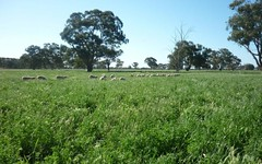 Lot 2 Anderson, Moama NSW