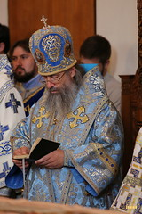 141. The Commemoration of the Svyatogorsk icon of the Mother of God / Празднование Святогорской иконы Божией Матери