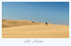 All Alone (loobyloo55) Tags: landscape sand outdoor dune australia nsw newsouthwales sanddunes tinycity stocktonbeach