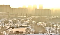 Frost and sun (a wonderful day) (vitalsimonovjb) Tags: moscow russia landscape nature forest winter architecture river