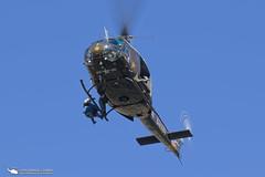 Aircraft Down Training 2016 (PhantomPhan1974 Photography) Tags: ocsd asu ocsdasu orangecountysheriffsdepartment orangecounty sar huey uh1h as350b3 airbushelicopters sheriff duke duke6 n185sd n186sd bellhelicopters