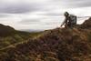 Slice of Highlands (Sofia Podestà) Tags: edinburgh scotland uk autumn nature landscape north cold grass outdoor adventure escape dreamscape edimburgo scozia sofia podestà sofiapodestà mountain