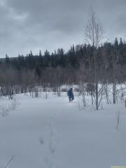 Глубину снега измерит  летящий скороход..
