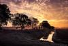 2016-11 Even genieten van de opkomst van de zon - Zwartewaal/NL (Meteo Hellevoetsluis) Tags: 1108 2016 aboutpixels herfstseizoen mnd11 nl nederland netherlands southholland voorneputten zuidholland zwartewaal altostratus bewolking cirrocumulus cloud clouds collecties geografie geography landscape landschap meteo nature natuur neerslag november polder precipitation sloot specials sun sunset water weather weer wolk wolken zon zonsondergang explore