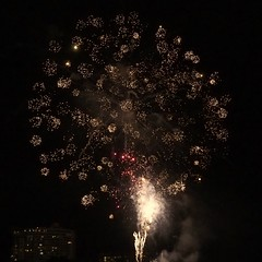 "New Years Eve,  2016 Cairns • <a style=""font-size:0.8em;"" href=""http://www.flickr.com/photos/146187037@N03/32016146735/"" target=""_blank"">View on Flickr</a>"
