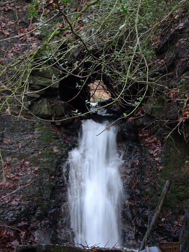 Culvert, Blaen Bran Brook, Upper Cwmbran 10 January 2017