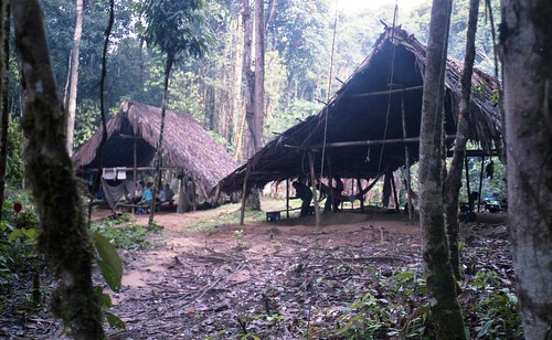 Our camp in the Jungle