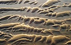 Sculpture océane (Ciceruacchio) Tags: sand sable sabbia beach plage spiaggia sea mer mare ocean oceano coast côte costa atlantic atlantique atlantica sculpture scultura abstract abstrait astratto patterns texture hourtin gironde aquitaine france francia frankreich olympuspenf