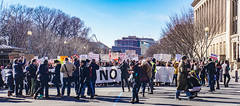 2017.02.04 No Muslim Ban 2, Washington, DC USA 00477