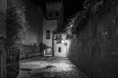Judera de Sevilla (Javier Martinez de la Ossa) Tags: blackandwhite bw espaa sevilla andaluca bn nocturna farol jazmin barriodesantacruz juderia platinumheartaward javiermartinezdelaossa callejondelajudera