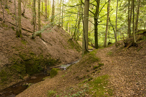 Ruisseau en aval de la cascade du Nideck