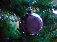 Purple and Green (PrunellaCara) Tags: bauble christmas purple green stilllife christmastree joy pretty