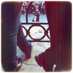 Standing room only (Caroline Oades) Tags: mobiography trafalgarsquare nationalgallery shoes legs london streettheatre street maximuslxix bettiexl hipstamatic